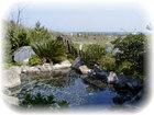気多の湯(浜村温泉)