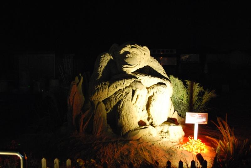 取砂丘イルミネーションと D-K LIVE 2010 in 砂の美術館 104