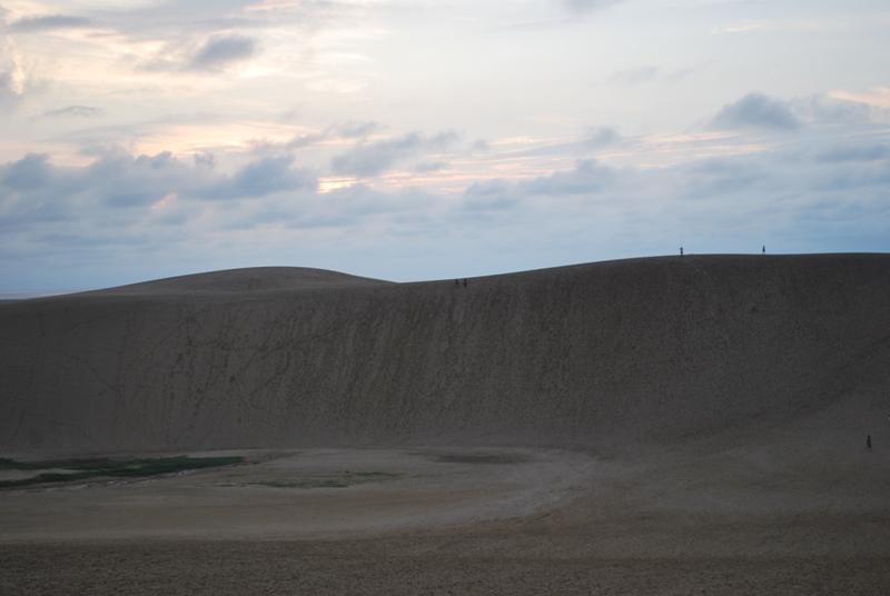 鳥取砂丘の夕暮れ 1
