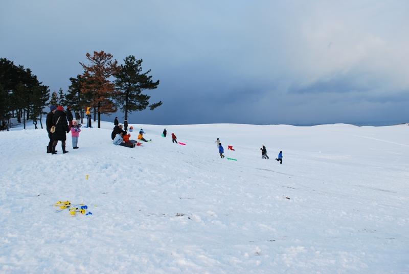 雪の鳥取砂丘でソリを楽しむ