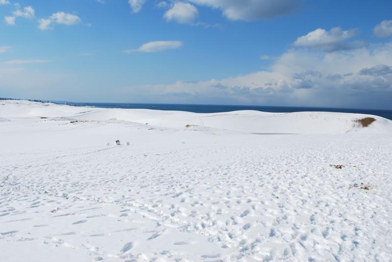 雪の鳥取砂丘 馬の背 左側