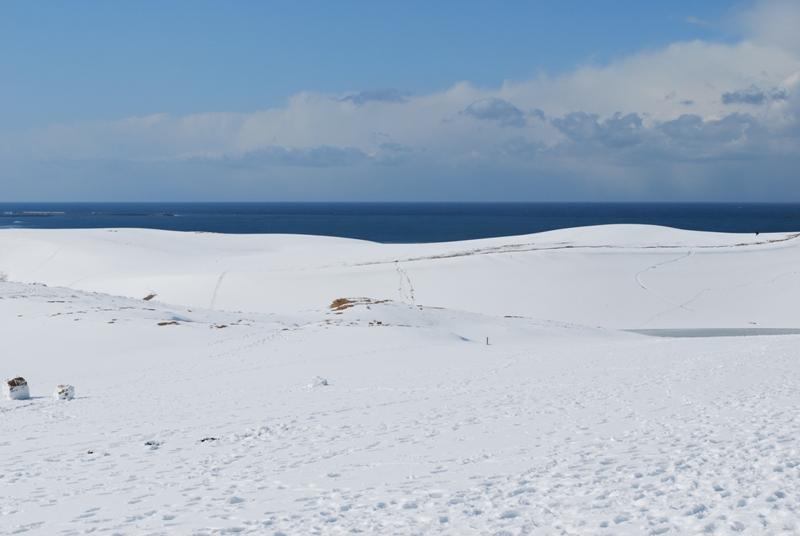 雪の鳥取砂丘 馬の背 左