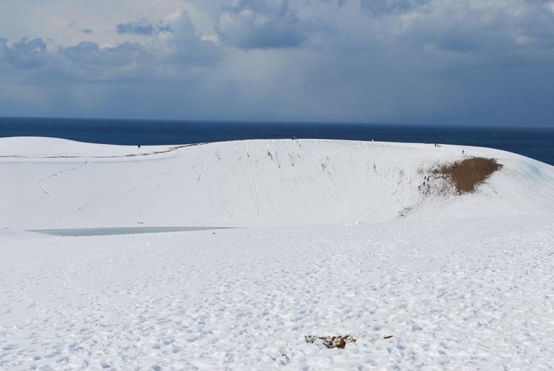 雪の鳥取砂丘 馬の背