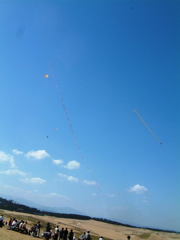 凧上げ大会
